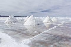 Salar de Uyuni & x28;Salt Flat& x29;, Bolivia Stock Photo