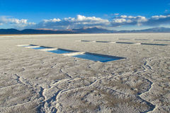 Salar lake Stock Images