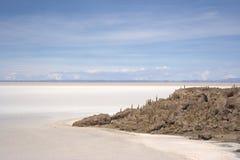 salar pescado isla de del uyuni Στοκ εικόνες με δικαίωμα ελεύθερης χρήσης