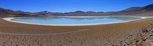 Salar Tuyajto, Atacama desert, Chile Royalty Free Stock Images