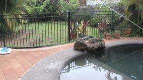 Salar una piscina
