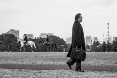 Salaryman & imperiału konie zdjęcia royalty free