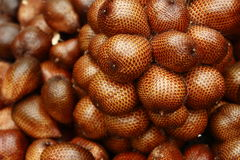 Salasa Adulis. Or widely known as Salak in Indonesia and Malaysia is one of the exotic fruits that can only be found in wild tropical jungle Royalty Free Stock Photography