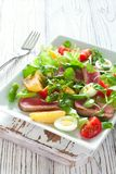 Salat με τον τόνο, τα φρέσκα λαχανικά και τα αυγά Στοκ εικόνες με δικαίωμα ελεύθερης χρήσης