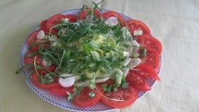 菜salat 免版税库存照片