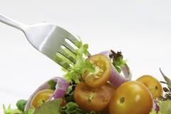Salat Stock Image