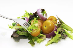 Salat 库存照片