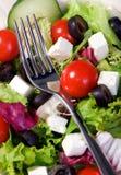 Salat Stockbilder