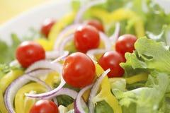 Salat Lizenzfreie Stockbilder