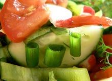 salat 免版税库存图片