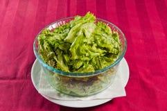 Salat 09 Lizenzfreie Stockfotografie