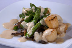 The salat with asparagus , sea scallop Royalty Free Stock Photo