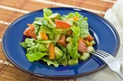 Salat auf blauer Platte Lizenzfreie Stockbilder