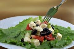 Salat con queso de queso Feta y verduras frescas fotografía de archivo libre de regalías