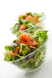 Salat der geräucherten Lachse Lizenzfreies Stockfoto