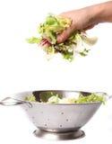 Salat in der Hand Lizenzfreie Stockfotografie