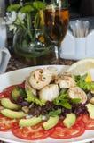Salat der Kamm-Muscheln lizenzfreie stockfotos