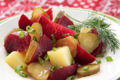 Salat der roter Rüben, der Kartoffeln, der Zwiebeln und der in Essig eingelegten Gurken Stockfoto