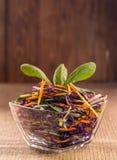 Salat des blauen Kohls mit Karotten Stockfotografie