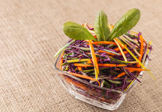 Salat des blauen Kohls mit Karotten Lizenzfreies Stockbild