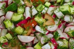 Salat des Frischgemüses Lizenzfreie Stockfotos