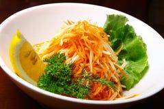 Salat des Karotteapfels Lizenzfreie Stockbilder