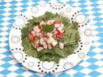 Salat des Löwenzahns lizenzfreie stockfotos