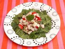 Salat des Löwenzahns stockbilder