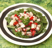 Salat des Löwenzahns stockfoto