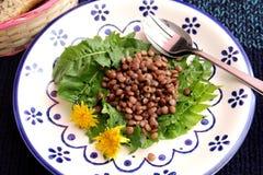 Salat des Löwenzahns und der Linsen stockbild