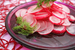 Salat des roten Rettichs lizenzfreie stockfotografie
