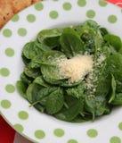 Salat des Spinats Lizenzfreie Stockbilder