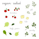 Salat des strengen Vegetariers Stockbilder