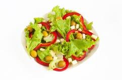 Salat diätetisch Lizenzfreie Stockfotografie