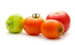 salat för löken för bakgrundsgräslökgurkan sköt ny vita grönsaker för fjäderstudiotomaten Arkivbilder