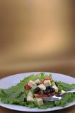 Salat with feta cheese and fresh vegetables Stock Photography