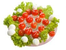 Salat ` Fliegenpilze ` Lizenzfreie Stockfotografie