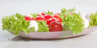 Salat ` Fliegenpilze ` Lizenzfreie Stockfotos