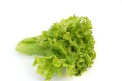Salat frais #3 Photographie stock libre de droits