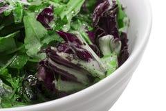 Salat getrennt auf weißem Hintergrund lizenzfreies stockfoto