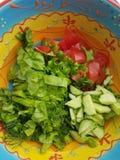 Salat. Grin salat greenery food stock photos