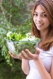 Salat ist bereit Stockbild
