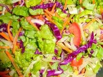 Salat, Kopfsalat, Tomate, Karotte Stockbilder