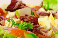 Salat-Makro Stockbild
