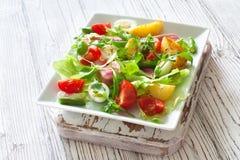 Salat med tonfisk, nya grönsaker och ägg Arkivbild