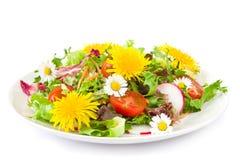 Salat mit Blüten Stockbild