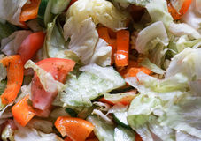 Salat mit Chinakohl Stockbilder