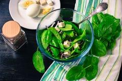 Salat mit frischem Spinat verlässt, Käse, rote Zwiebel, Leinsamen lizenzfreie stockfotos