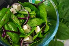 Salat mit frischem Spinat verlässt, Käse, rote Zwiebel, Leinsamen lizenzfreies stockbild