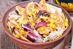 Salat mit gebratener Hühnerleiste und -gemüse Lizenzfreie Stockfotos